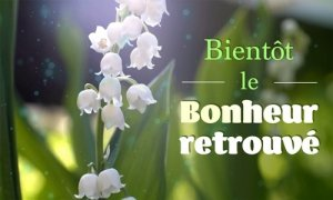 BIENTOT LE BONHEUR RETROUVE